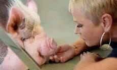 Vegana, Xuxa protesta em rede social contra consumo de peru no Natal