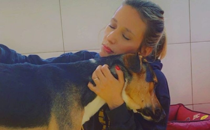 Luisa Mell detona Claudia Ohana após devolução de cães adotados