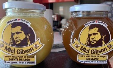 Chilena ganha direito de vender mel com a marca Miel Gibson