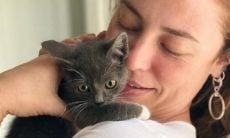 """Paolla Oliveira se encanta com gatinho: """"vontade de colocar no bolso e levar para casa"""""""