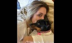 As celebridades do mundo pet de Carolina Botelho reúnem milhares de seguidores e likes no Instagram. Foto: Divulgação