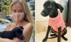 """Angélica adota cachorrinha e se emociona: """"Estou muito feliz"""""""