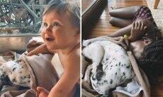 """Bruno Gagliasso adota nova cachorrinha: """"Bem-vinda a família"""""""
