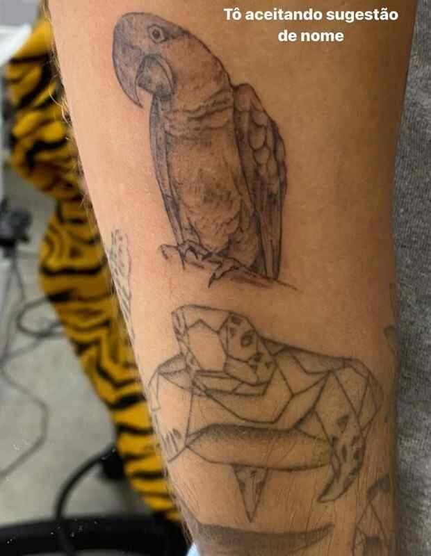 Enzo Celulari tatua arara no braço e brinca: 'aceito sugestão de nome' (Foto: Reprodução/Instagram)