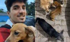 Gabriel Medina e Yasmin Brunet adotam duas cachorrinhas