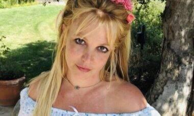 """""""Quero remover meu DIU para engravidar e não me deixam"""", diz Britney Spears"""