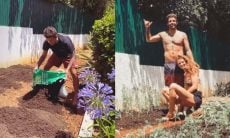 Pedro Scooby e Cintia Dicker exibem plantação em casa: 'nossa hortinha'