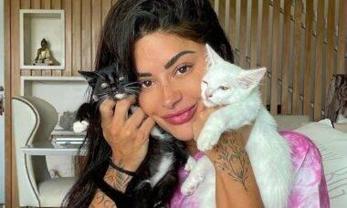 Mãe de pet! Aline Riscado revela ter 16 gatos e 2 cachorros: 'amo'