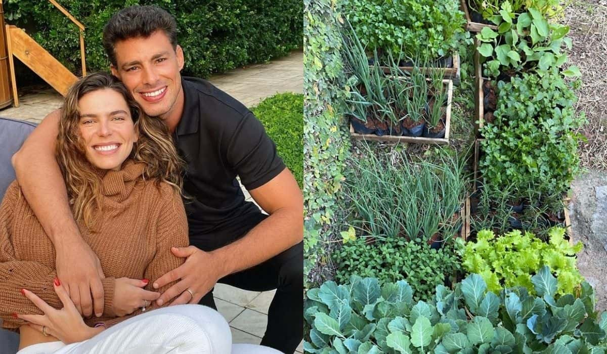 Cauã Reymond e Mariana Goldfarb exibem horta em casa: 'bem legal'