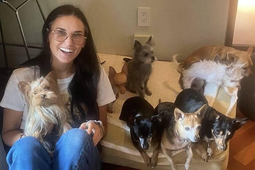 Demi Moore posta foto ao lado dos nove cães e encanta os fãs